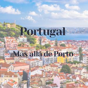 Cata de vinos Portugal